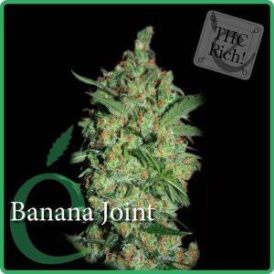 banana joint1