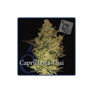 caprichosa thai1