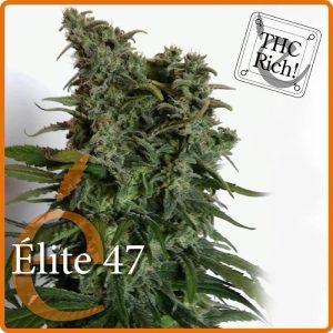 elite 471
