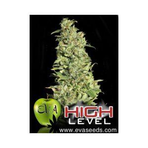 high level1