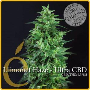 llimonet haze ultra cbd1