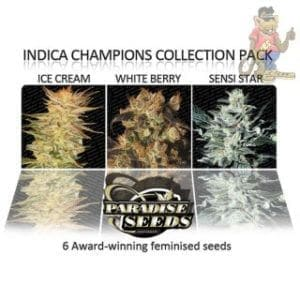 Paradise-Seeds-Indica-Champions-Pack-Seeds-6er[1]