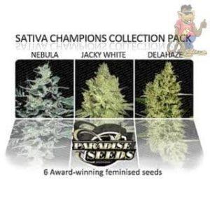Paradise-Seeds-Sativa-Champions-Pack-Seeds-6er[1]