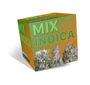 indica mix db91