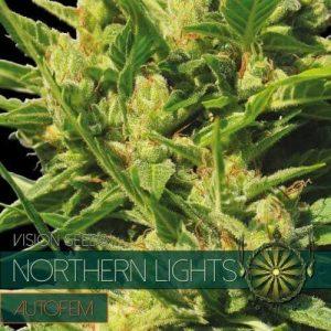 autofem-vision-seeds-northern-lights-500x500-1-500x500[1]