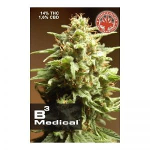 b3 medical1