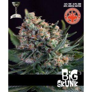 big skunk 3721 1 1