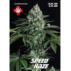 speed haze 3722 1 1