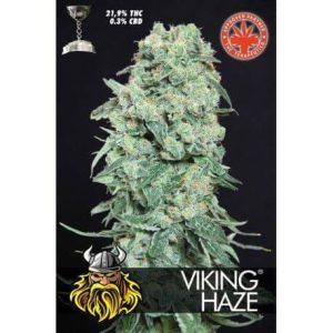 viking haze 3731 1 1