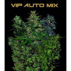 vip-auto-mix-autoflowering[1]