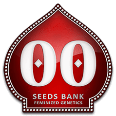 00-seeds-bank