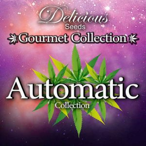 GOURMET COLLECTION AUTOMATIC #2