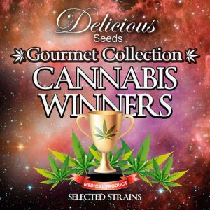 GOURMET COLLECTION CANNABIS WINNERS #2