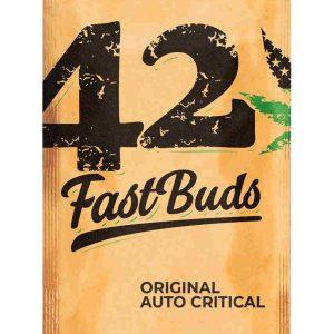 Original Auto Critical Easy Resize.com