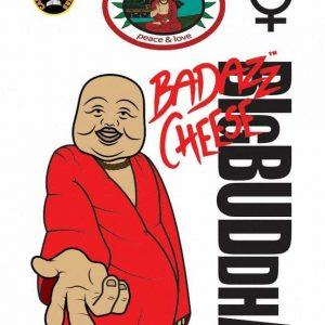 Big Buddha Seeds Badazz Cheese Pack