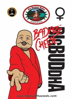 Big Buddha Seeds Badazz Cheese Pack
