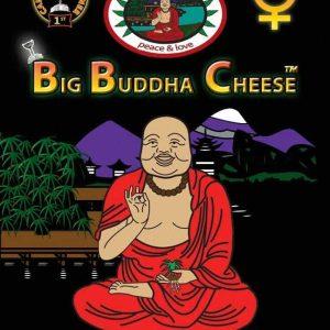 Big Buddha Seeds Big Buddha Cheese